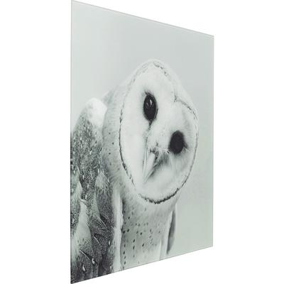 Picture Glass Owl Face One 60x60