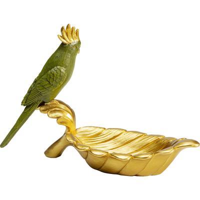 Cuenco deco Parrot Guard