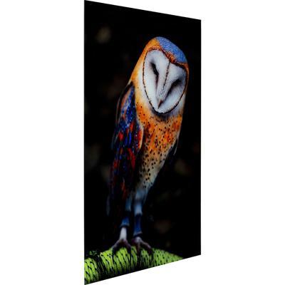 Cuadro cristal Cute Owl 120x80cm