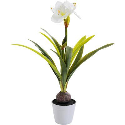 Planta decorativa Amaryllis blanco 78cm