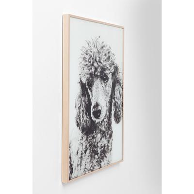 Cuadro Alu Poodle 60x40cm