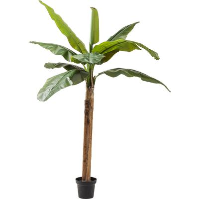 Planta decorativa Banana Tree 190cm