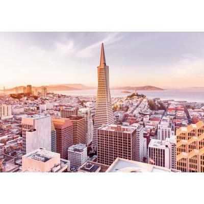 Papel de Colgadura San Francisco Morning