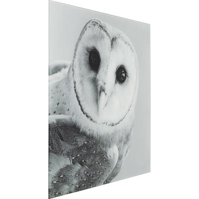 Picture Glass Owl Face Two 60x60