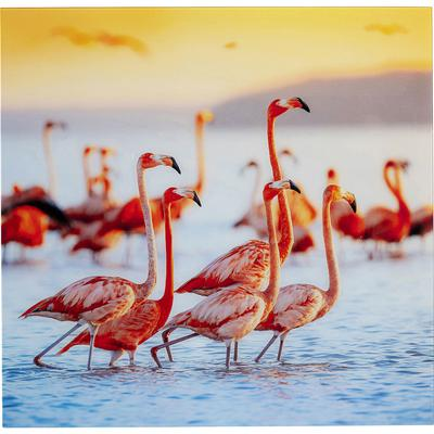 Cuadro cristal Flamingo Familie 80x80cm