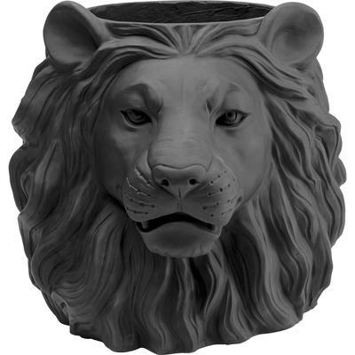 Vasija Lion negro