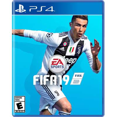 FIFA 19 PS4 ESTANDAR