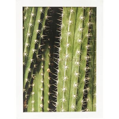 Cuadro Kaktus 45x33cm