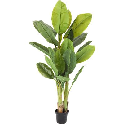 Planta decorativa Banana Tree 180cm