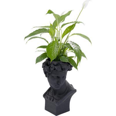Macetero decorativo David negro
