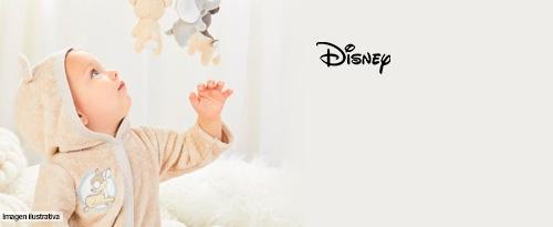 Disney Baby Personajes Favoritos
