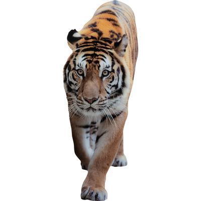 Decoración pared Acryl Art Tiger 120x45cm