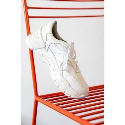 Sneakers Kite