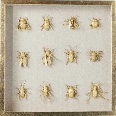 Cuadro Bugs 60x60cm
