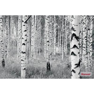 Papel pared Komar Woods 400x270 cm