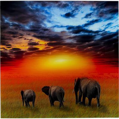 Cuadro cristal Savanne Elefants 100x100cm