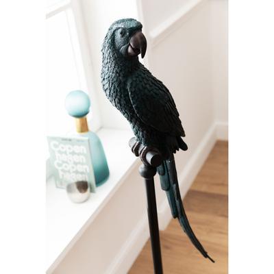 Figura decorativa Parrot petróleo