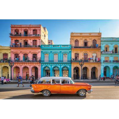 Vlies Havanna
