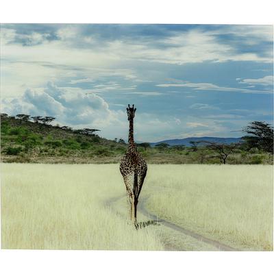 Cuadro cristal Savanne Giraffe 100x120cm