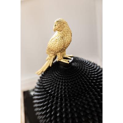 Caja Parrot