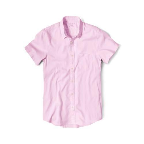 Camisa Wooster Manga Corta  - Rosado