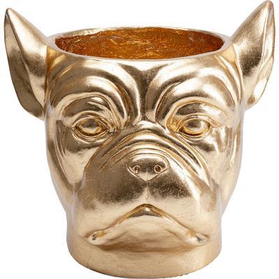 Macetero decorativo Bulldog oro