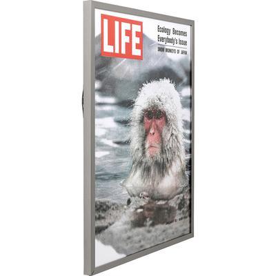 Cuadro Magazin Monkey 83x63cm